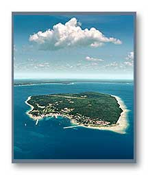 Aerial Photo of Mackinac Island (vertical)